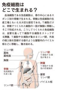 menekisaibo02