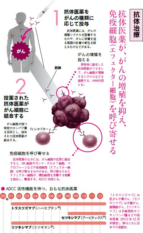 がんと免疫VOL.2