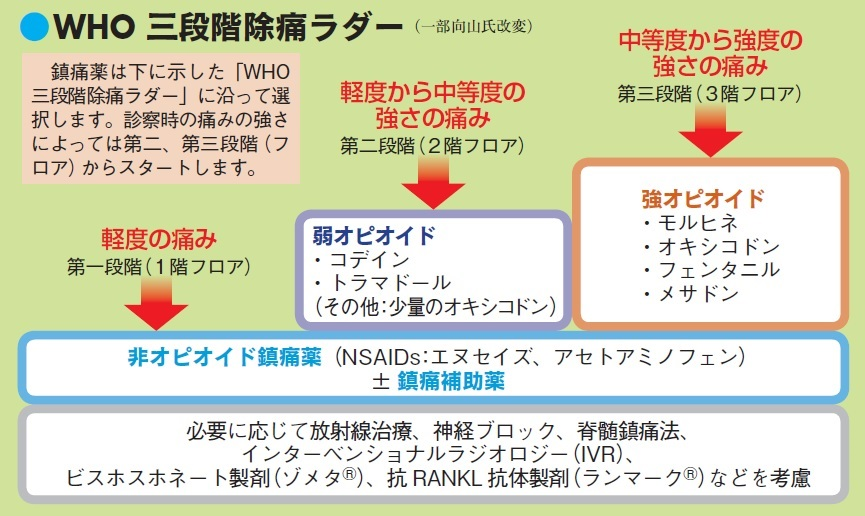 「WHO方式がん疼痛治療法」の骨子である「WHO三段階除痛ラダー」を示した図。痛みの強さを3 段階に分けて、それぞれの痛みの段階に沿って鎮痛薬を選択する。この図の一番下の段は、薬以外の痛みの治療法として向山氏が加えたもの。