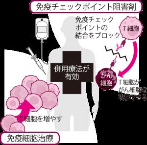 vol9_yokuwakaru02