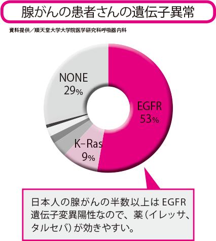 腺がんには分子標的薬の標的となる遺伝子異常が数多く見つかっており、EGFR遺伝子変異陽性は腺がんの中の53%。また、現在治験中のRET融合遺伝子陽性は1~2%、ROS1融合遺伝子陽性は1%といわれている。